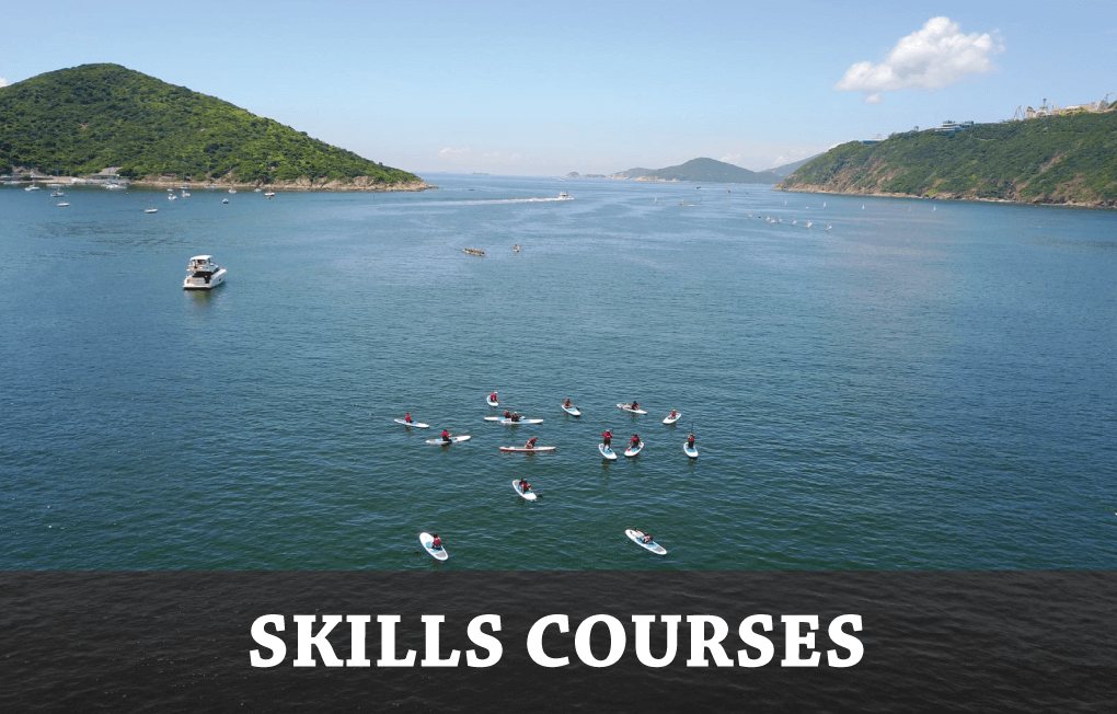 skills courses